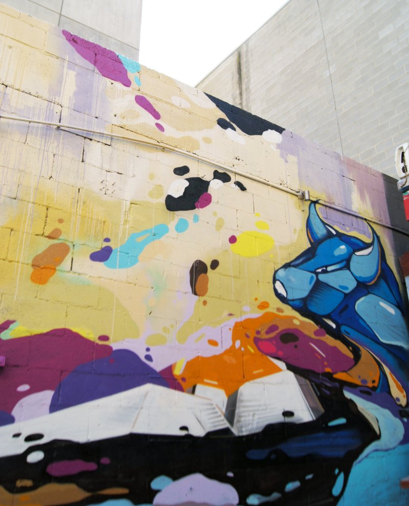 WOOLSHED ON HINDLEY (ADELAIDE) - Cold Krush Store/Gallery - Street ...